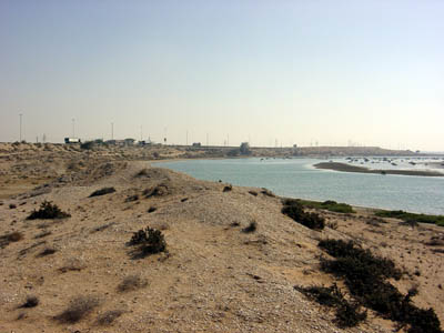 View of the Umm al-Qaiwain lagoon - a large shell midden is visible in the foreground (Photograph by Dr Mark Beech)