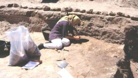 Dalma - Excavating and sampling the shell and fish bone layers in Trench 2 - 1994 season, site DA11  (Photograph by ADIAS)
