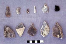 Dalma - Flints from site DA11 (Photograph by ADIAS)