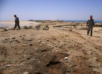 Sampling the settlement midden at Ra's Ghumays site 1 (Photograph by Dr Mark Beech)