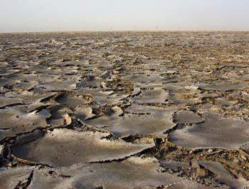 View of sabkha (Photograph by Dr Mark Beech)