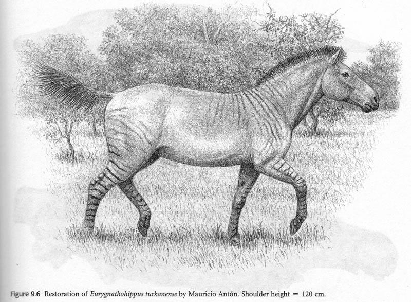 результате вымершая лошадь 6 букв белье подходит